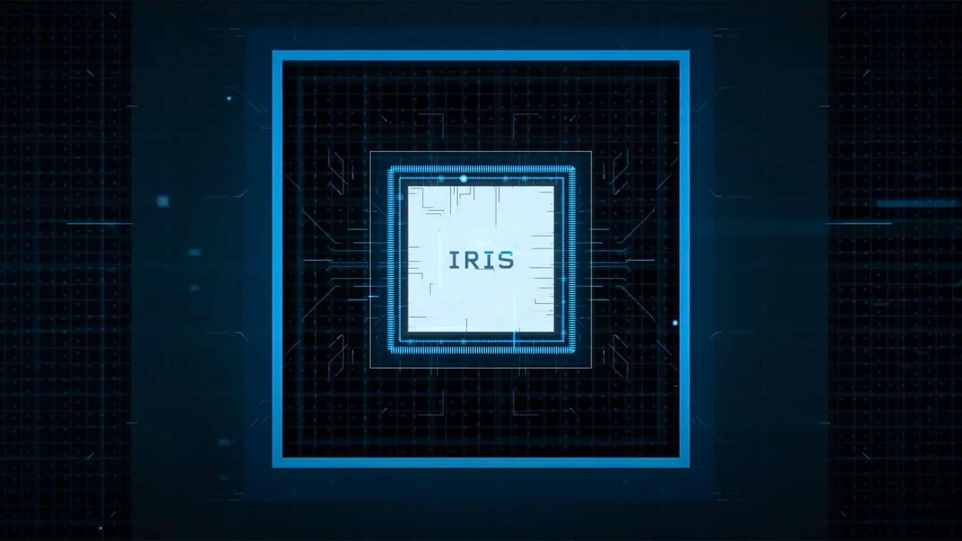 Irisity Iris graphic